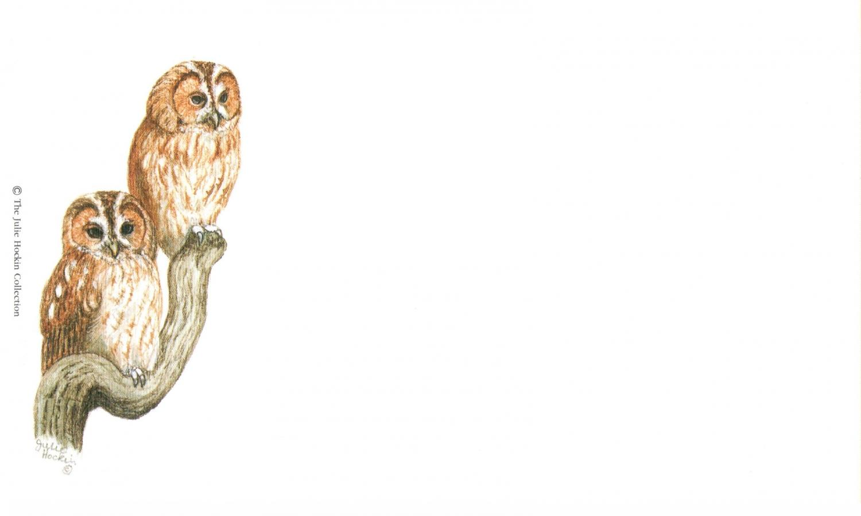 Correspondence Card - Tawny Owls