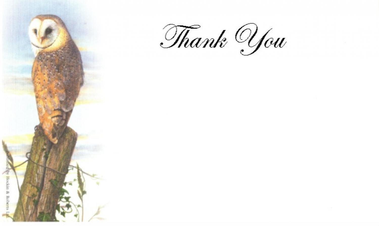 Thank You Cards - Barn Owl at Dusk