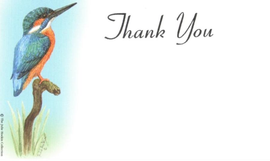 Thank You Cards - Kingfisher