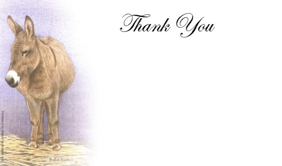 Thank You Cards - Donkey