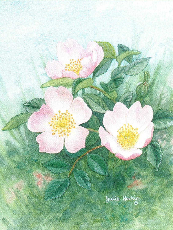 Magnetic Fridge Pad - Wild Rose