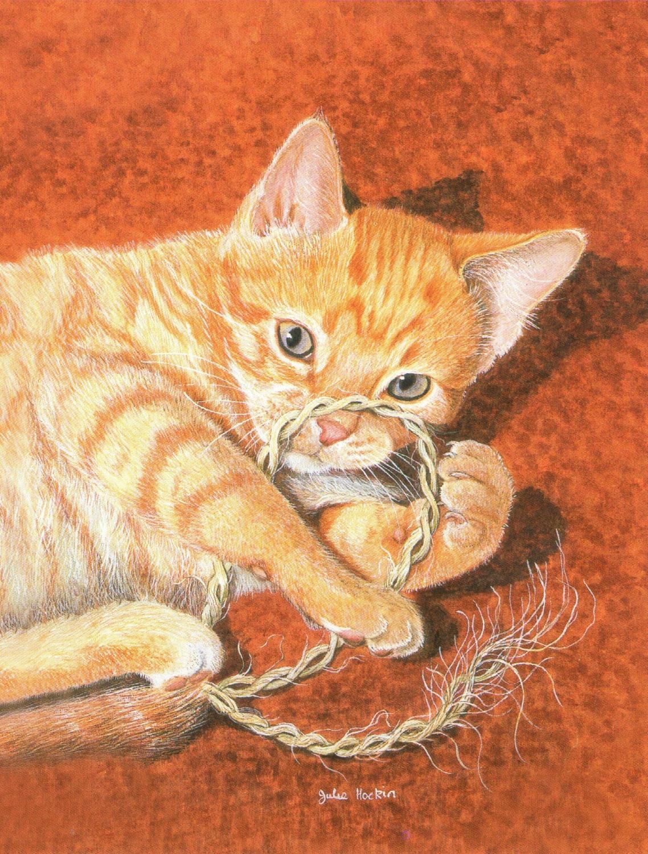 Magnetic Fridge Pad - Cats Cradle