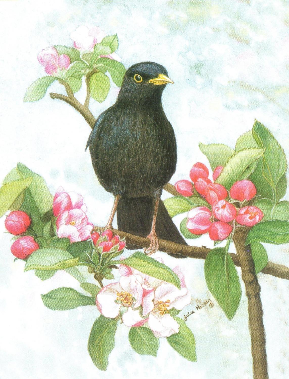 Magnetic Fridge pad - Black Bird