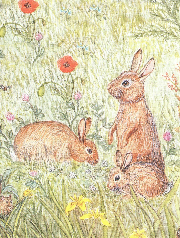 Magnetic Fridge Pad - Rabbits