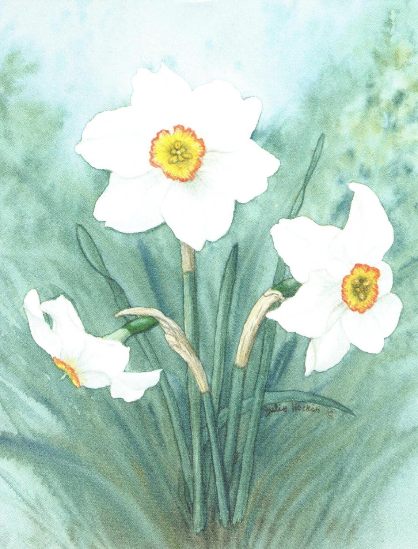 Magnetic Fridge Pad - Narcissus