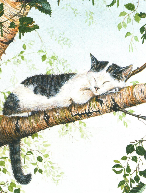 Magnetic Fridge Pad - Cat Nap