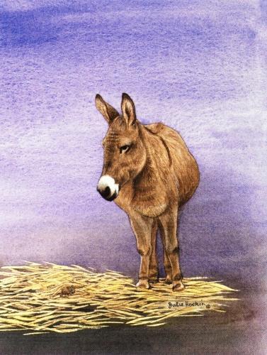 Magnetic Fridge Pad - Donkey
