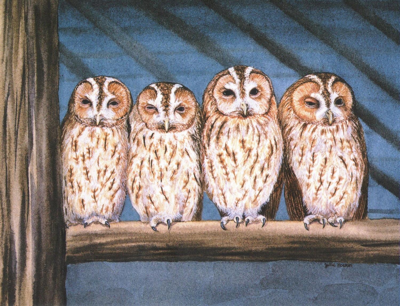 Magnetic Fridge Pad - Rescue Owls