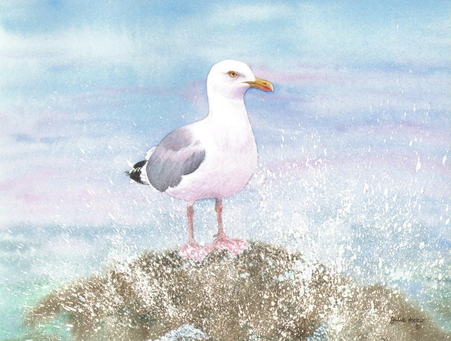 Magnetic Fridge Pad - Seagull on a Rock