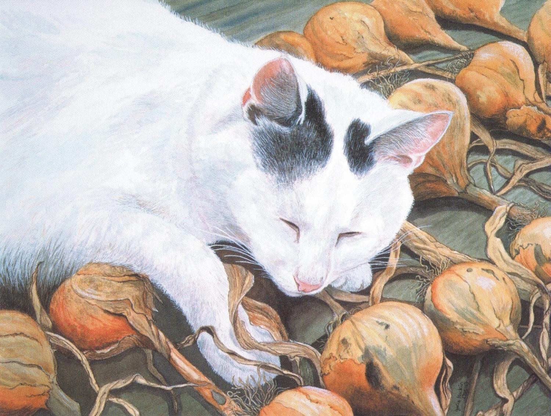 Magnetic Fridge Pad - Cat with Onions