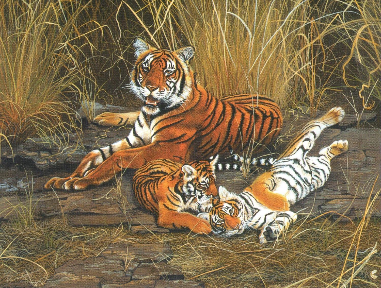 Magnetic Fridge Pad - Tiger Tiger