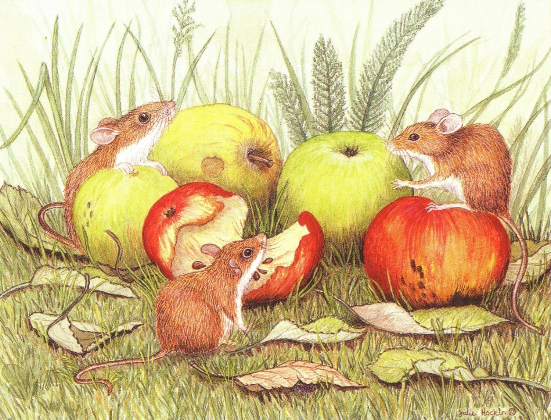 Magnetic Fridge Pad - Field Mice & Apples