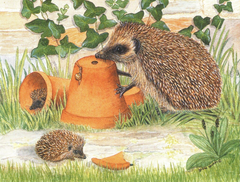Magnetic Fridge Pad - Hedgehog & Flowerpots
