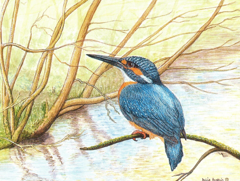 Magnetic Fridge Pad - Kingfisher