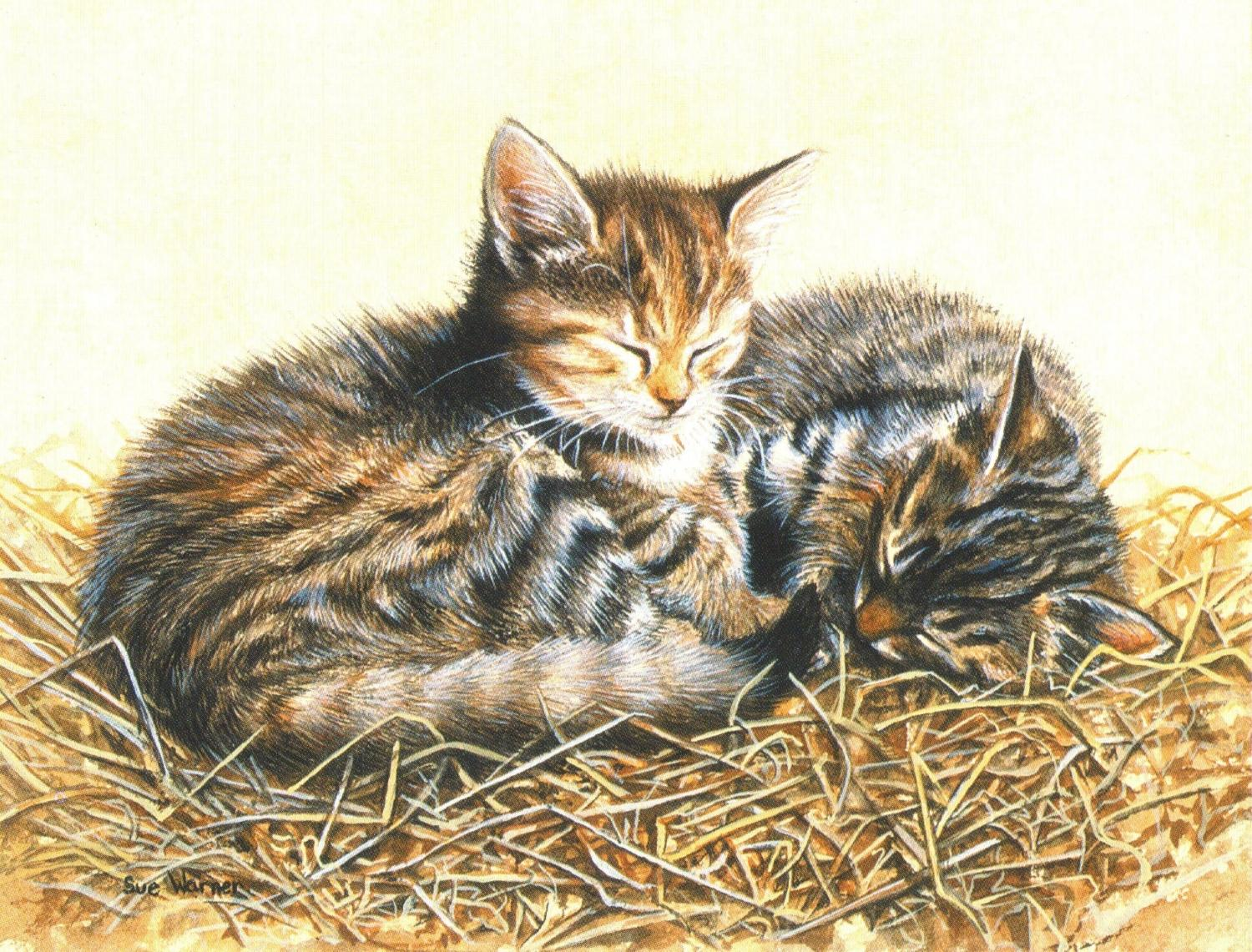 Magnetic Fridge Pad - Cats in Straw