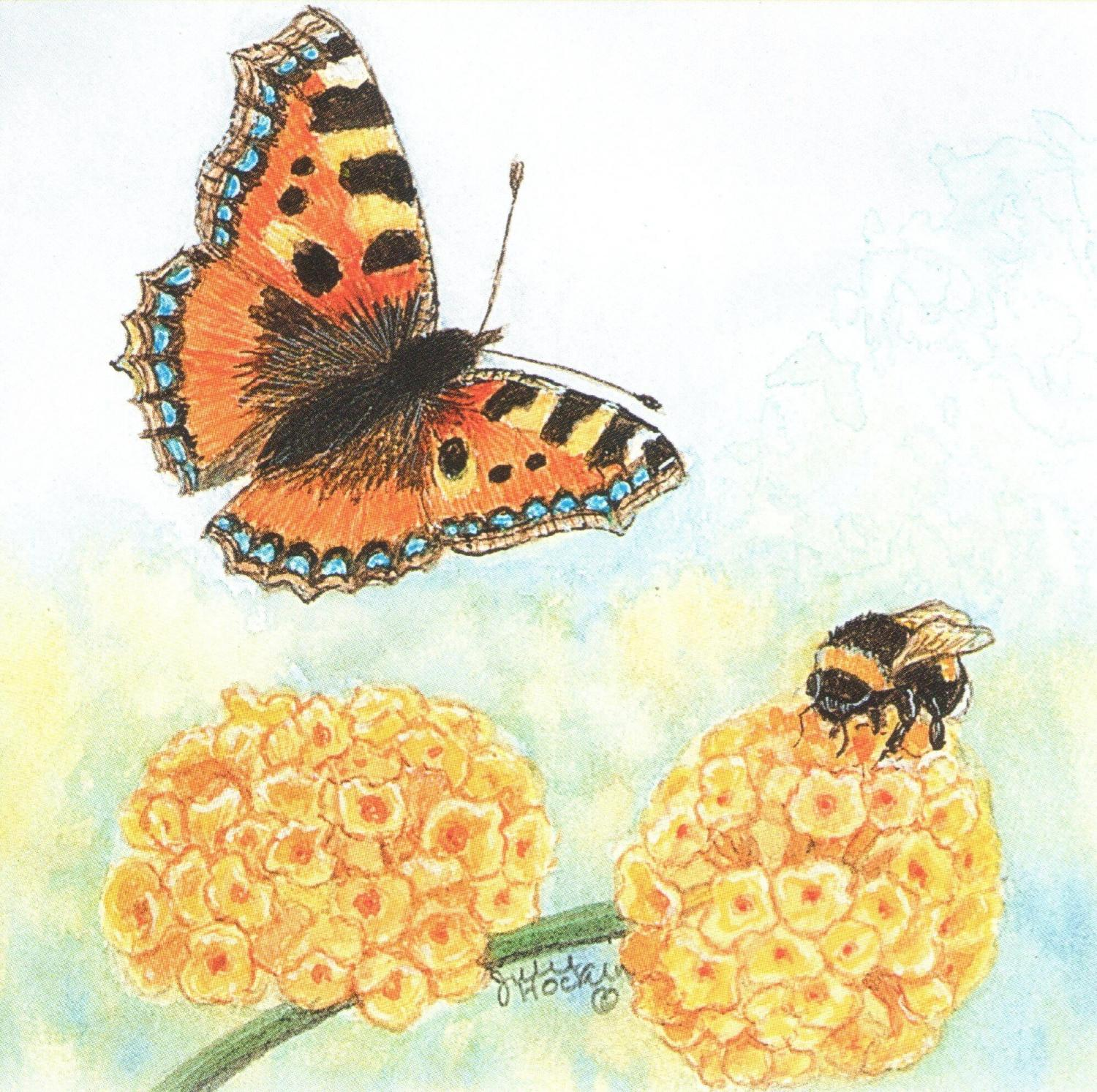 Small Magnetic Fridge Pad - Tortoiseshell But