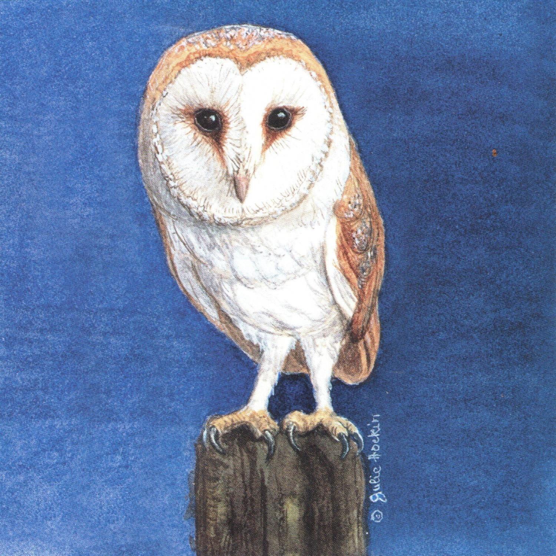 Small Magnetic Fridge Pad - Barn Owl