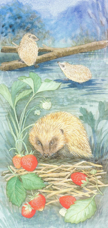 Tall Card - Hedgehogs