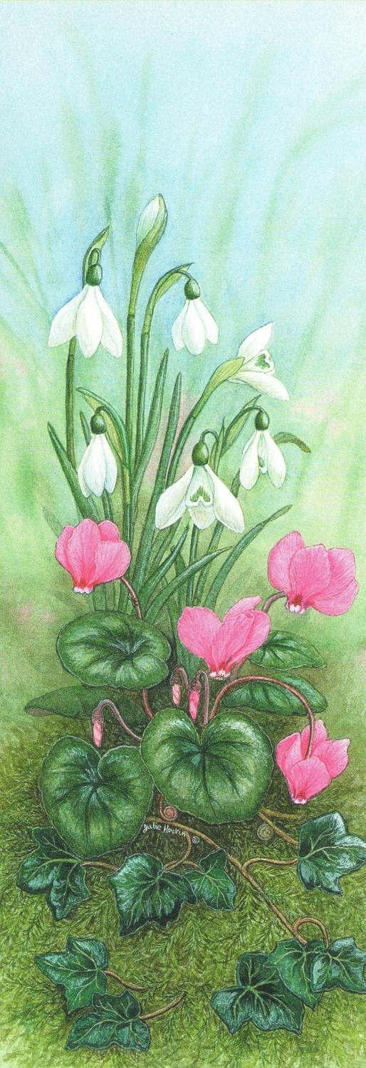 Bookmark - Cyclamen & Snowdrop