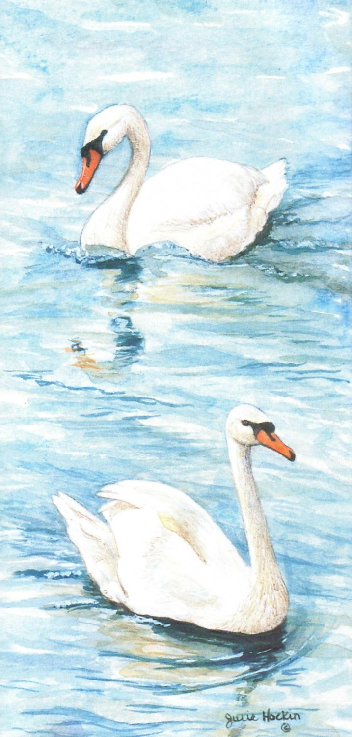 Tall Card - Swans