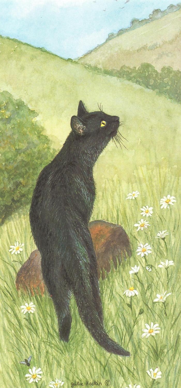 Tall Card - Black Cat