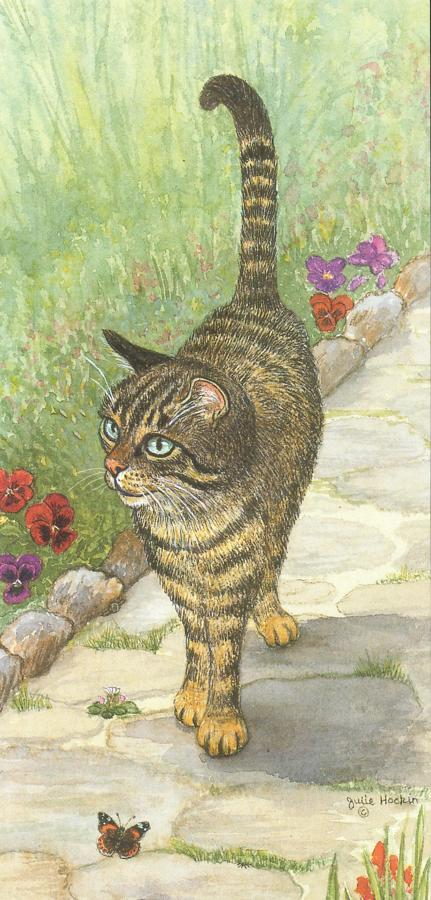 Tall Card - Tabby Cat