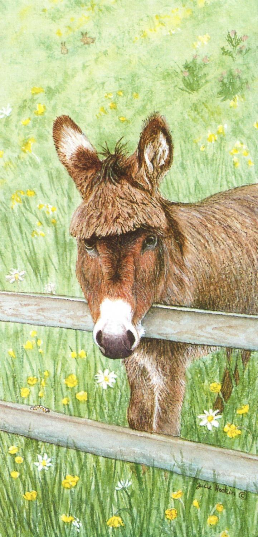 Tall Card - Donkey