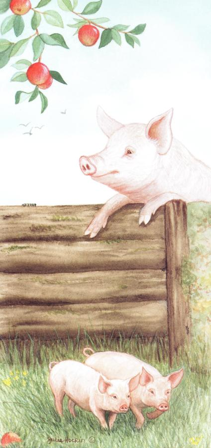 Tall Card - Pigs