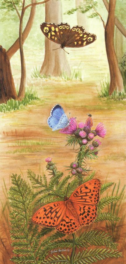 Tall Card - Woodland Butterfly