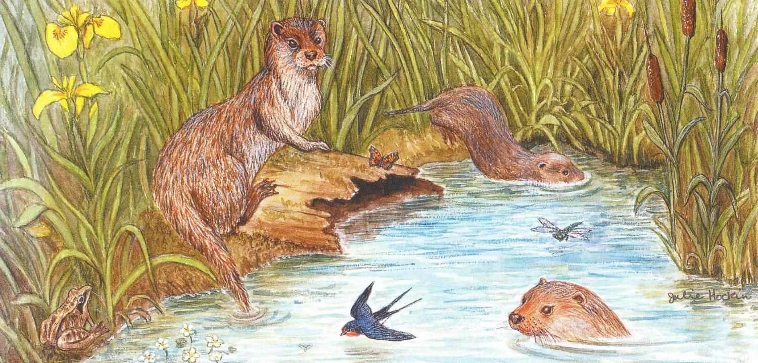 Tall Card - Otter Family