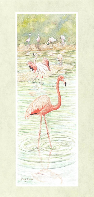 Tall Card - Flamingo