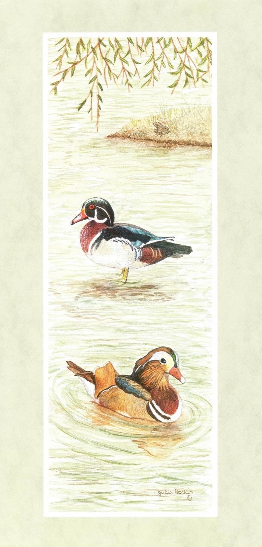 Tall Card - Mandarin & Wood Duck
