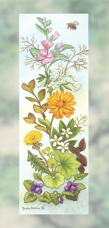 Tall Card - Cosmetic Herbs