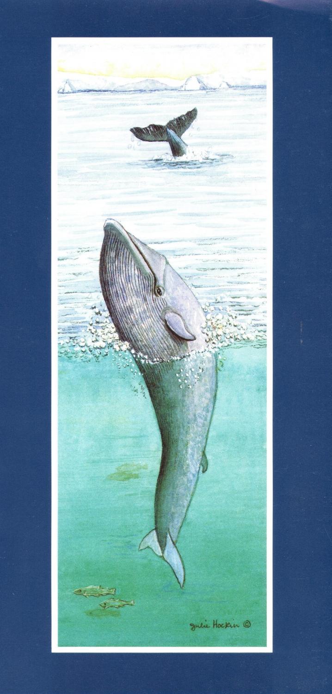 Tall Card - Blue Whale