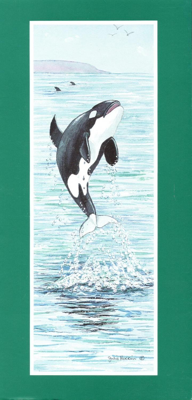 Tall Card - Killer Whale