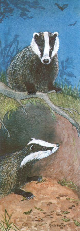 Bookmark - Badgers