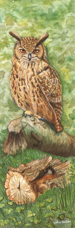 Narrow Card - Eagle Owl