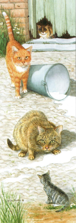 Narrow Card - Farmyard Cats