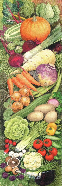Narrow Card - Kitchen Vegetables