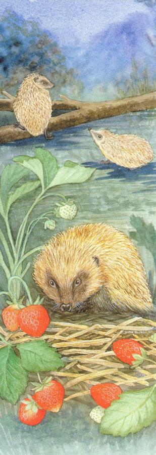 Bookmark - Hedgehog