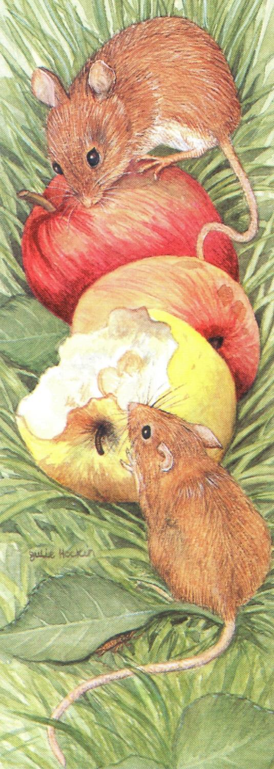 Bookmark - Field Mice
