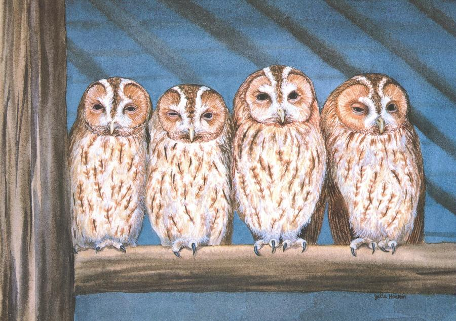 Card - Rescue Owls