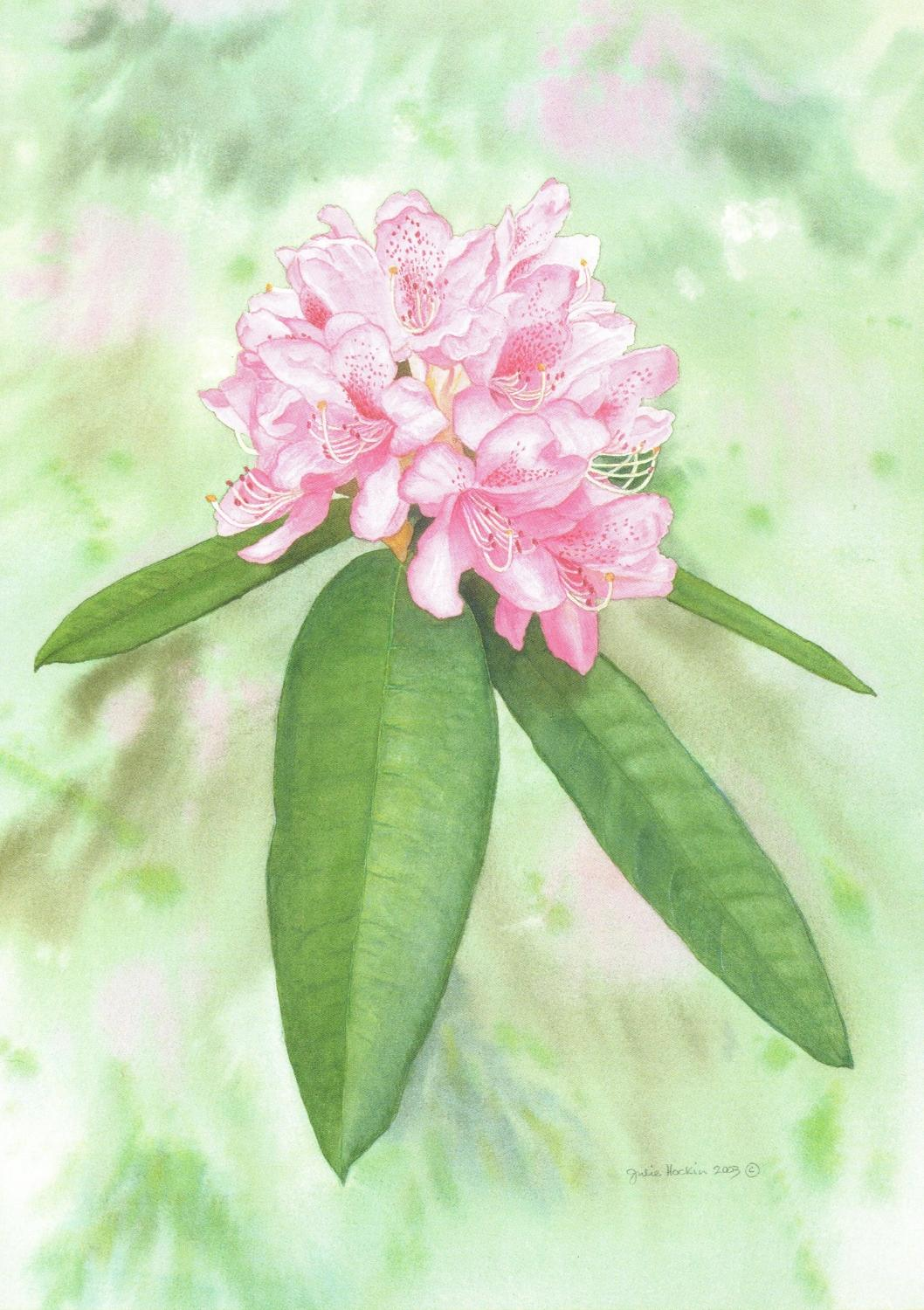 Card - Rhododendron