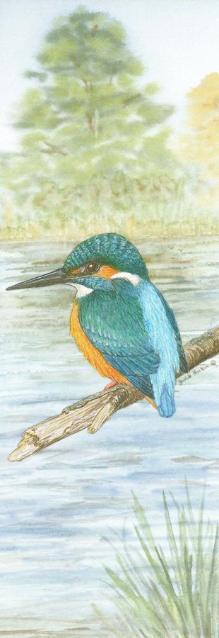 Bookmark - Kingfisher