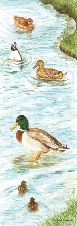 Bookmark - Mallard Ducks