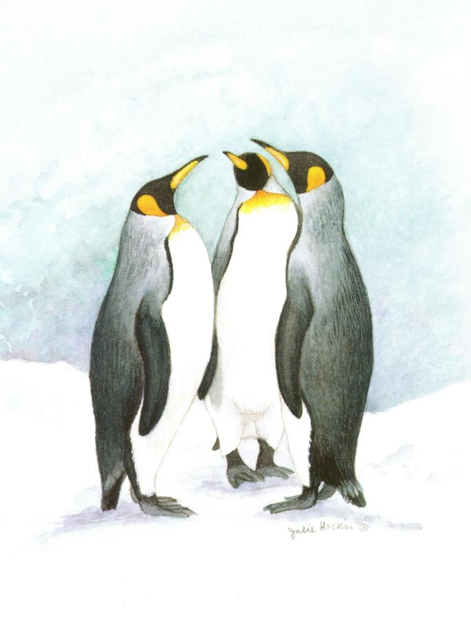 A6 Card - Penguins
