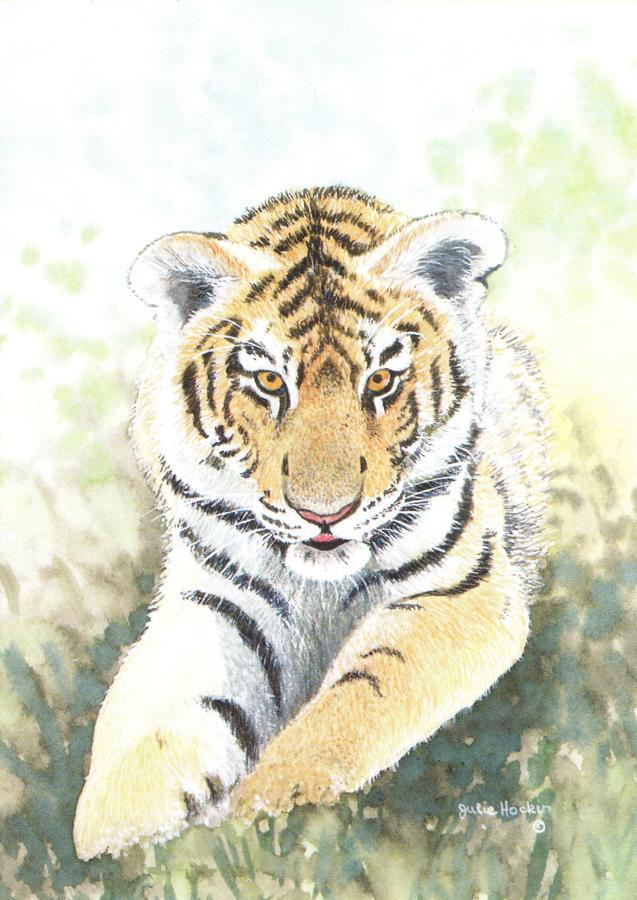 A6 Card - Tiger Cub