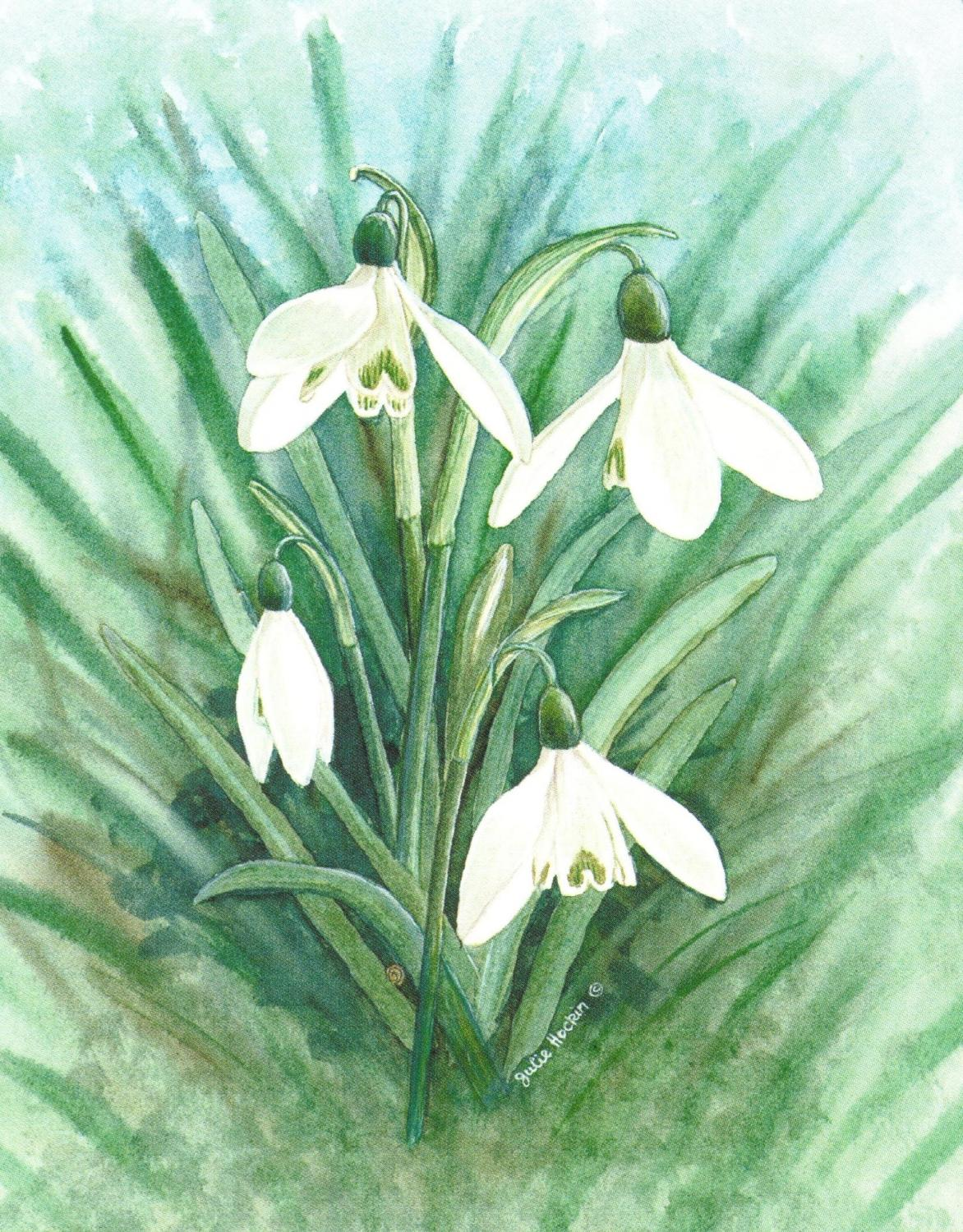 Small Card - Snowdrop