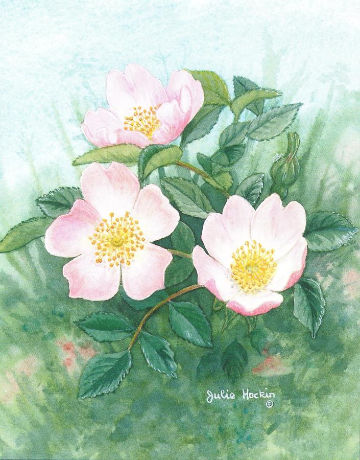 Small Card - Wild Rose