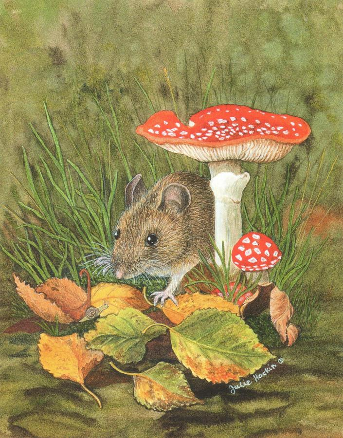 Small Card - Woodmouse